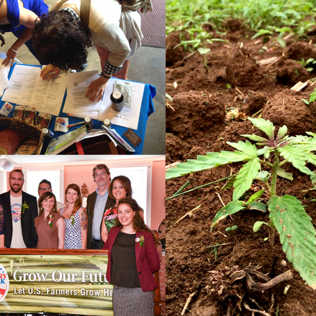 Hemp and a Course-Correction for Agricultural History