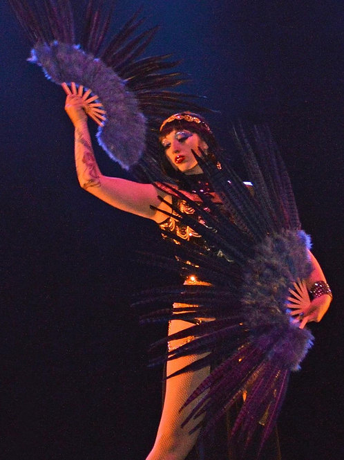 Burlesque Series, Class Props & Performance Video Package