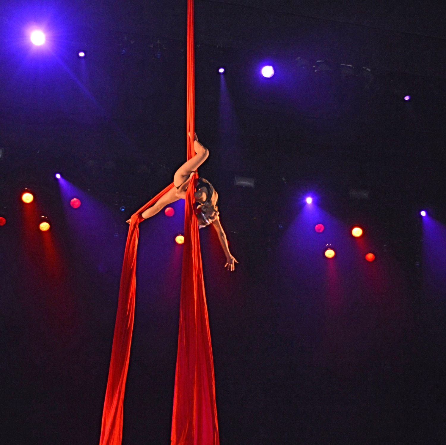 Aerialist Mari - Up & Away she goes!