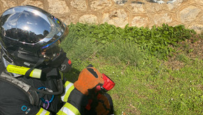 Développement Instagram | Pompiers de Nice | 10 000 Abonnés