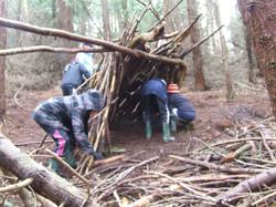 Natural shelter building