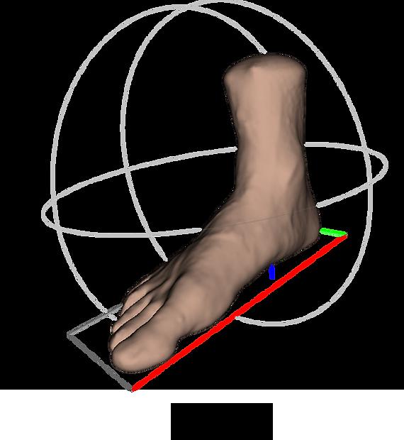 secondary-diagnostics-foot-image.png