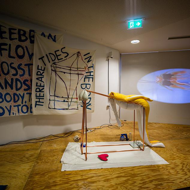 Performance, Installation Oana Paula