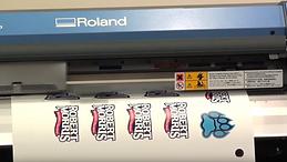 Roland Digital Printer
