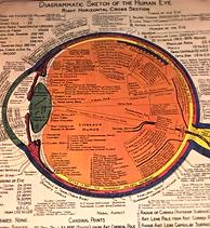Oftalmología en León