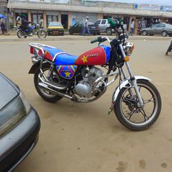 Cameroun 2014