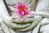 bouddha_lotus.jpg