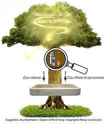 presentation_source_arbre_v2.jpg