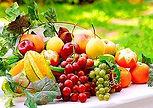 fruits_soleil.jpg