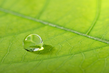 Comment retrouver le plaisir de boire ? Quelle est la meilleure eau à boire pour assurer notre santé et notre vitalité ? L'eau au naturel ou biocompatible est certainement la bonne solution.