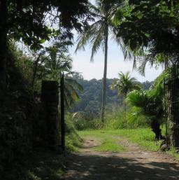 Entrada Pitangueiras de cima