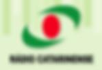 logo_catarinenseOK.png