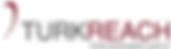 TURKREACH_DORUKSISTEM_LOGO_edited.png