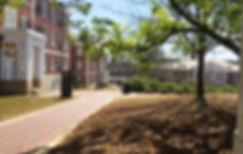 Auburn University Auburn Al Gameday