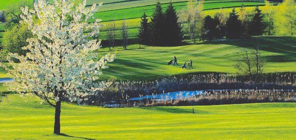 Golferlebnis GC OTTENSTEIN