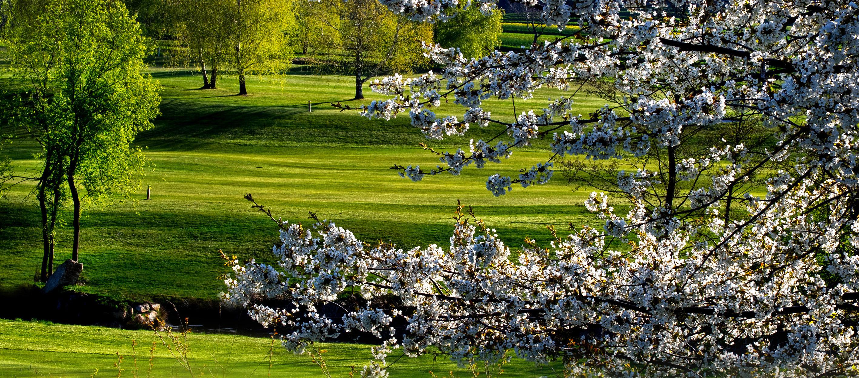 Golferlebnis DIAMOND CLUB OTTENSTEIN