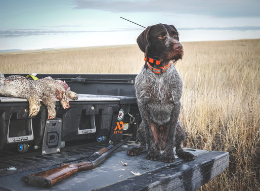 Gear Review: Decked truck storage system.