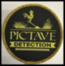 PICTAVE detection.jpg
