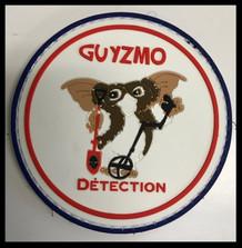 Guyzmo detection (2).jpg