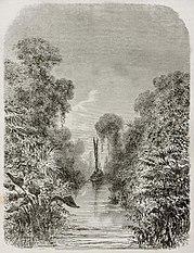 Velha visão da vegetação do Canal de Igarape-Miri. por Edouard Riou, 1867