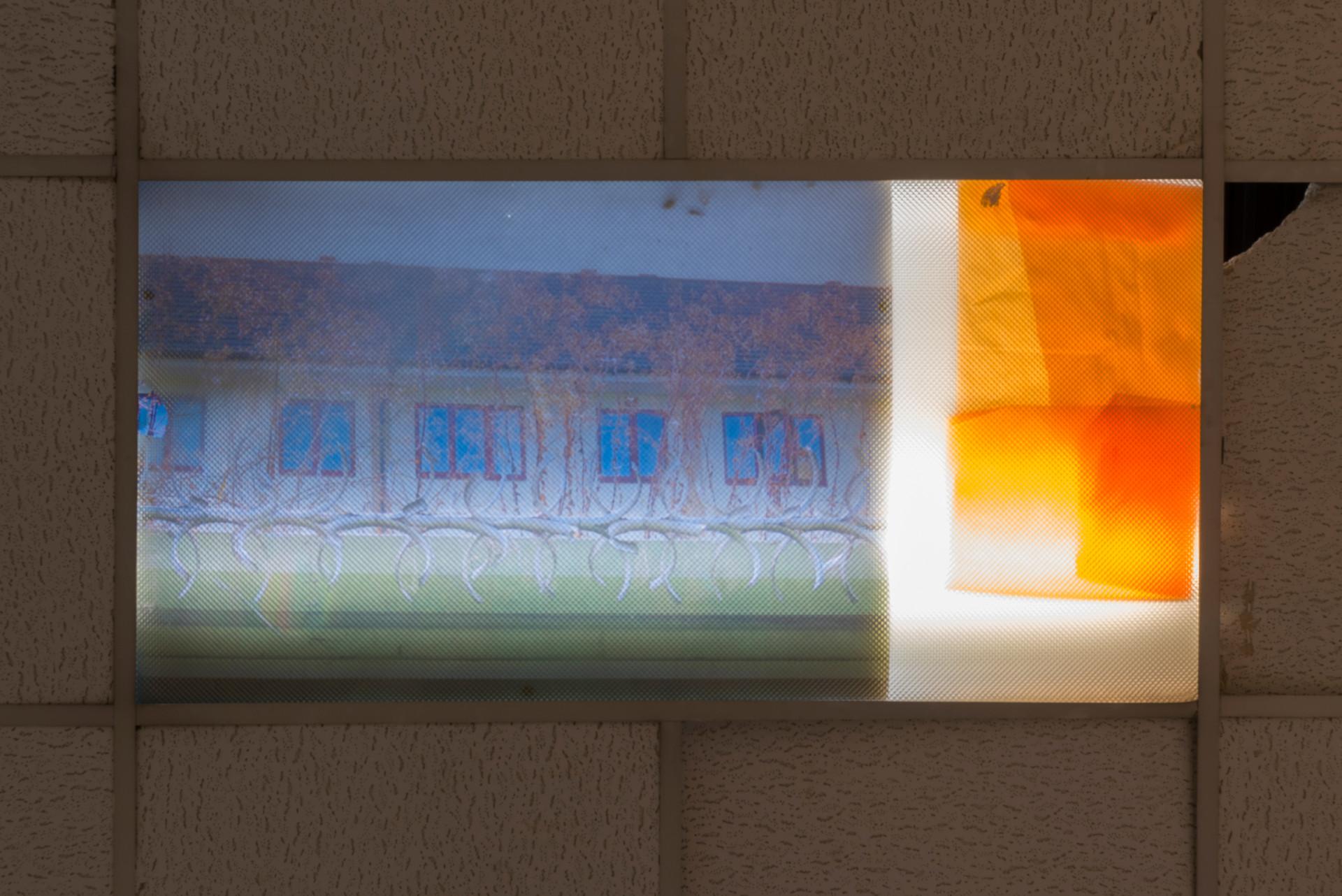 lightbox-crop2.jpg