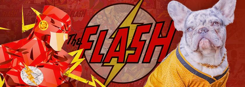 The_Flash_digital_art_DC_Comics_comics-5