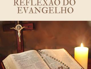 Reflexão do Evangelho-Pe. Aldo Dal Pozzo