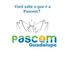 VOCÊ SABE O QUE É A PASCOM? 💻