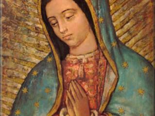 Visita da Imagem Peregrina de Nossa Senhora de Guadalupe nas comunidades