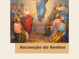 Reflexão do Evangelho: Pe. Aldo Dal Pozzo - 24.05.2020: ASCENSÃO DO SENHOR