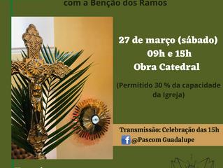 Celebração de Ramos na Catedral