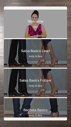 DanceReality1_2-4_7-Collections.jpg