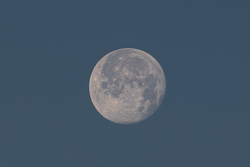 The Last Moon 2020