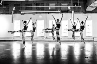 'Birds on a Wire'  - CO Ballet Branding