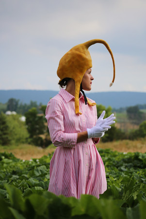 Still from Honeybees and Homemakers; Pollination and Gendered Labor