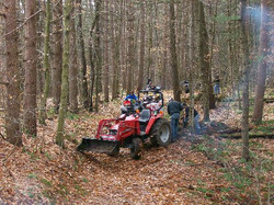 Trail Clearing