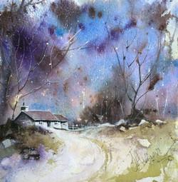 Winter's Beauty 1
