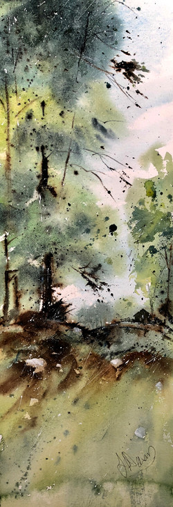 Woodland Copse 2