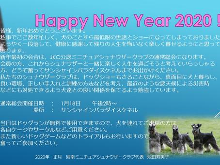 湘南ミニチュアシュナウザークラブの通常総会開催     (1月18日土曜日午後2時より)