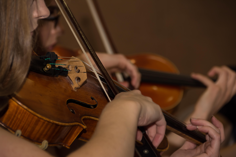 Processed Violins