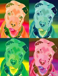 Pitbull Complete 4.jpg