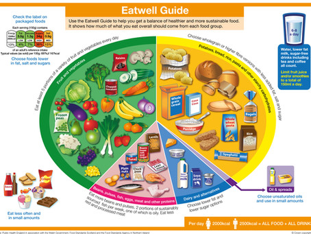Meal planning - the basics
