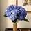 Thumbnail: Jumbo Luxe Hydrangea