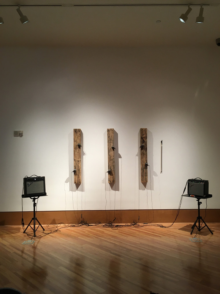 Song for the Sabal Pipeline @ FIU FROST ART MUSEUM