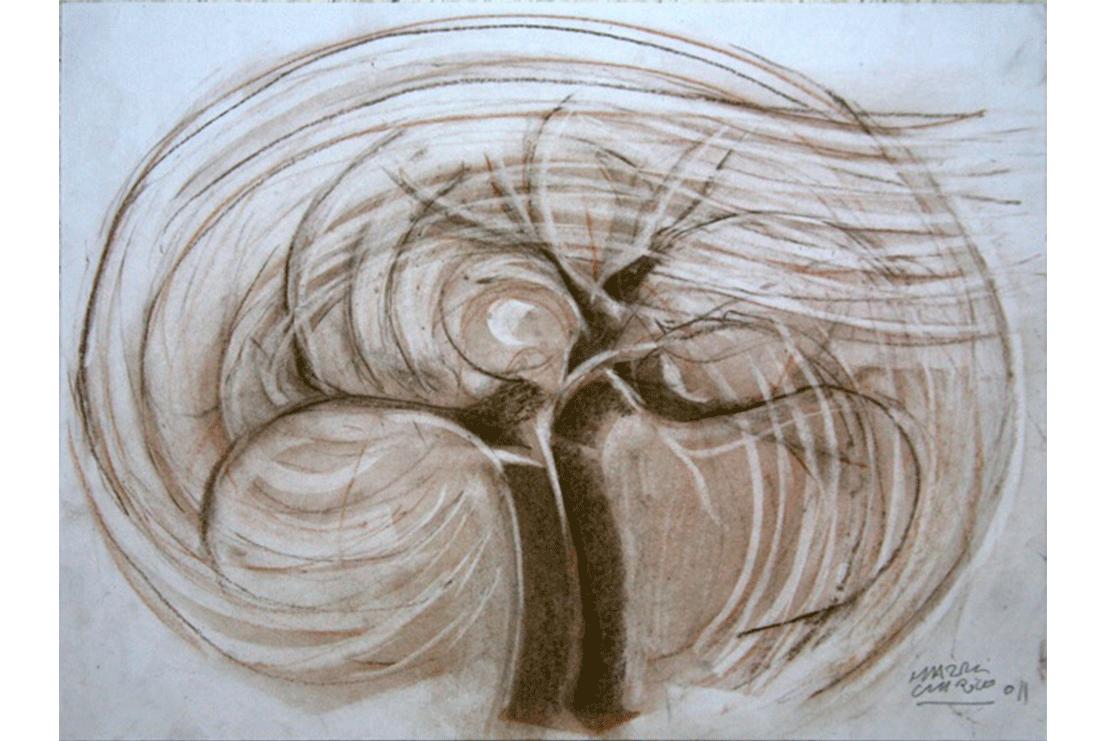 El viento en la Sabina