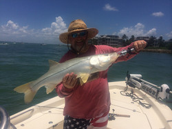 Will's Snook