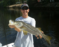 Dark Canal Snook