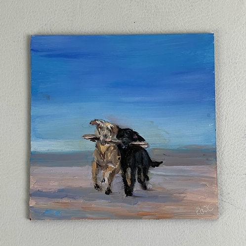 """Dogs on Beach"""