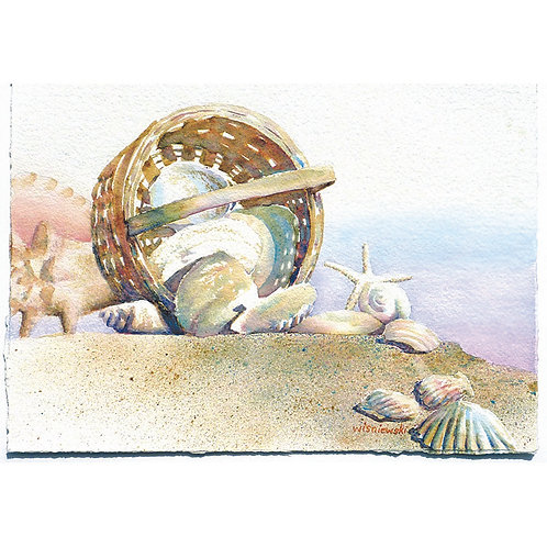 """Shell Collecting"" 10 Note Cards"