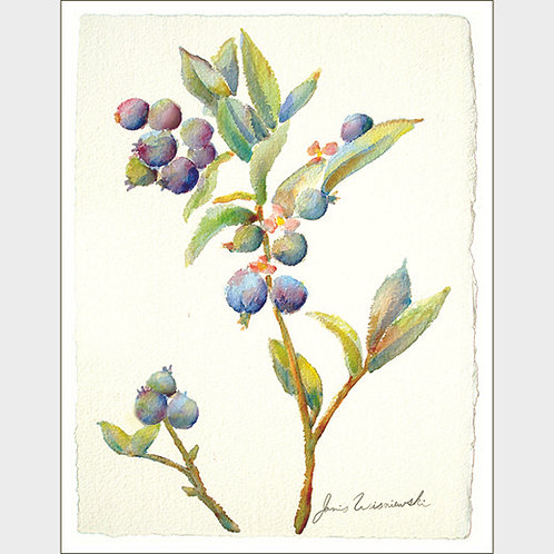 """Blueberry Sprig"" 10 Note Cards"